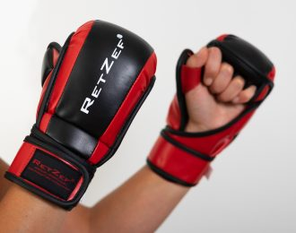 Fighting Gloves Pro
